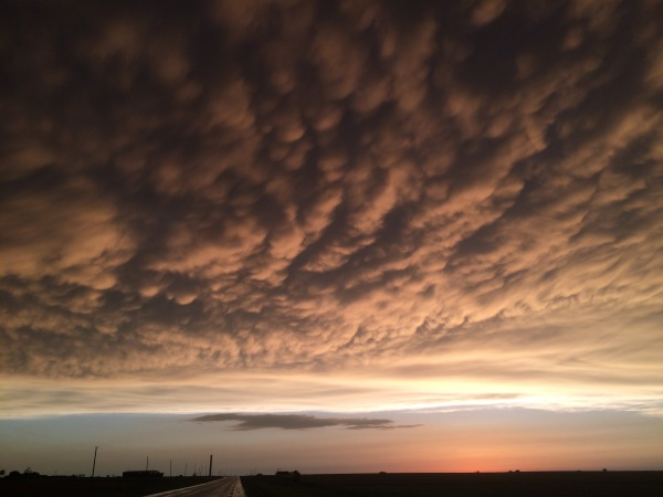 Mammatus filled sky