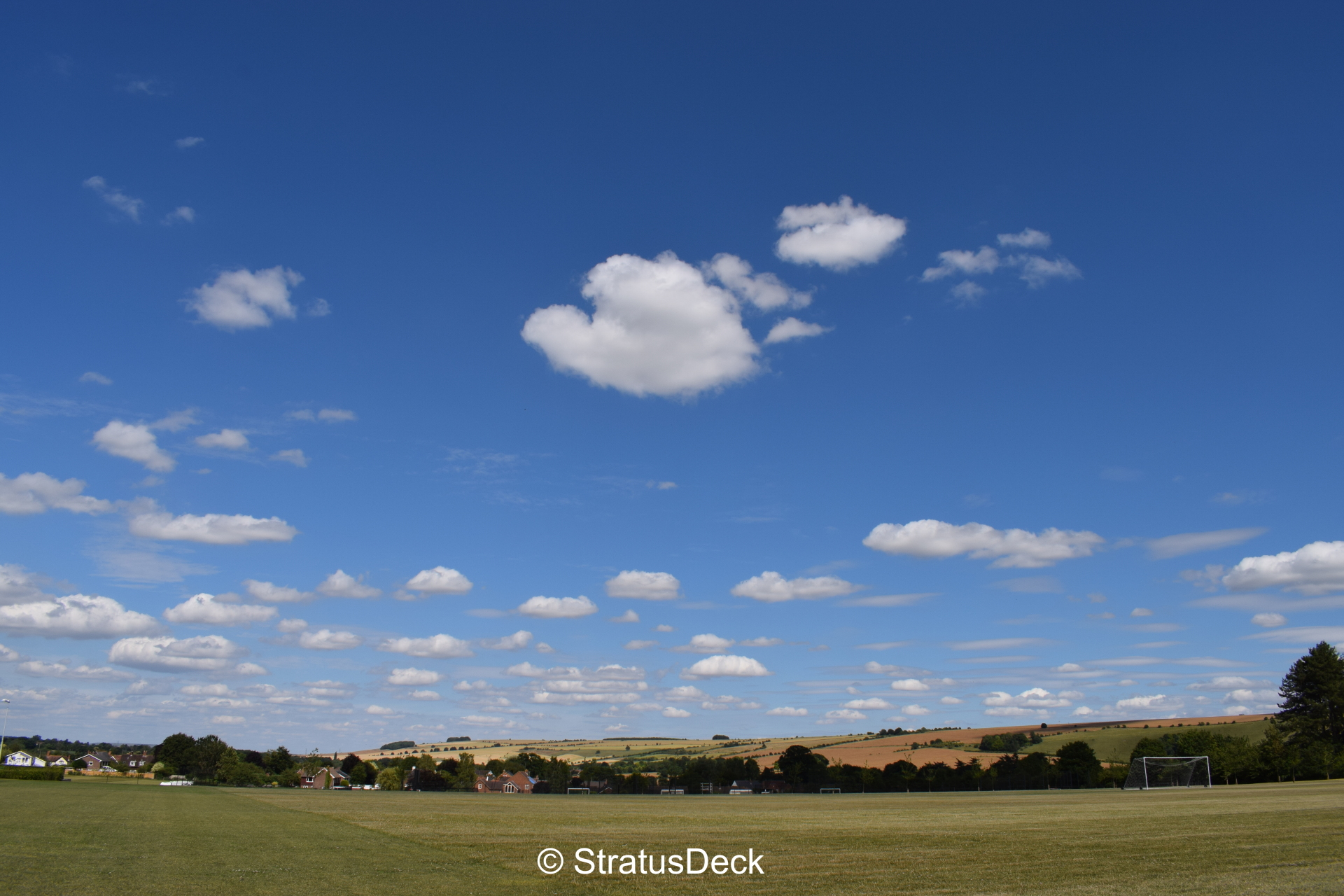 Cumulus field in the countryside